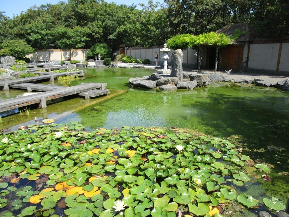 Oostend: Japanese garden