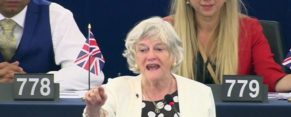 Europarl: Ann Widdecombe furore