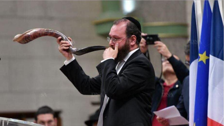Levi horn